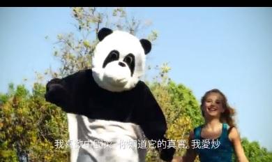 Panda BEFORE