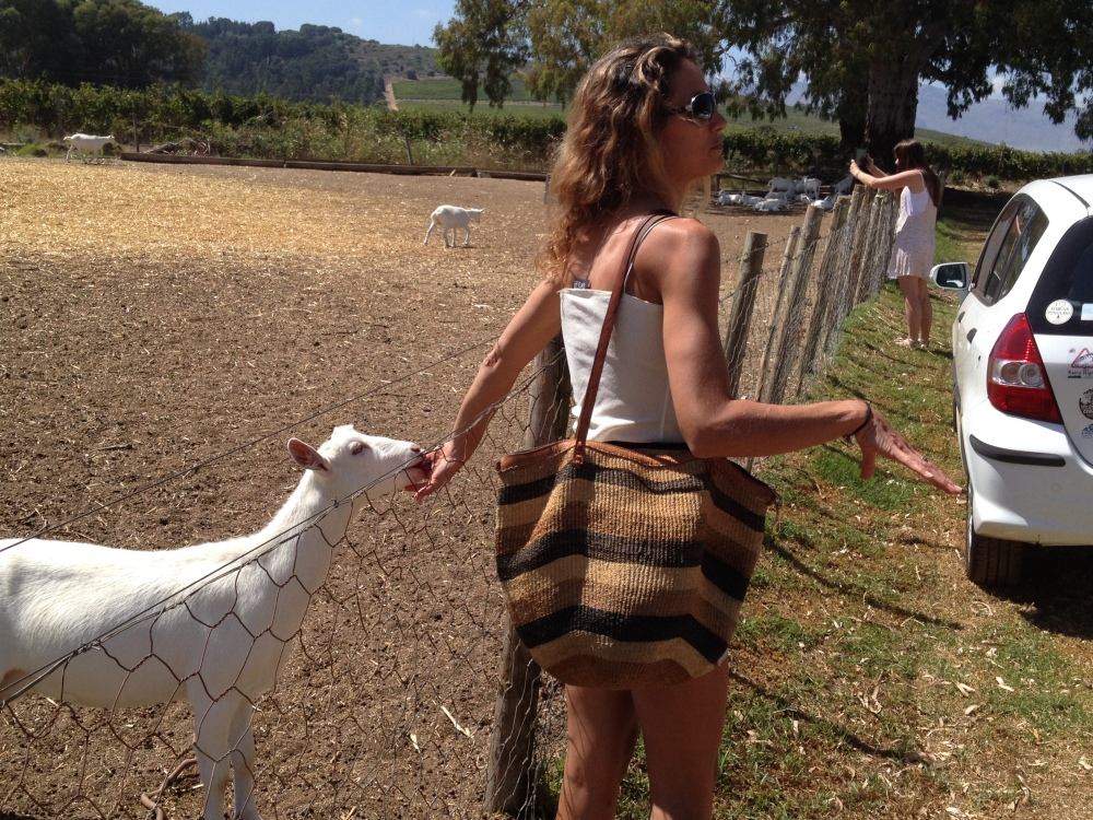 Shelly truly loves her goats. So cute!